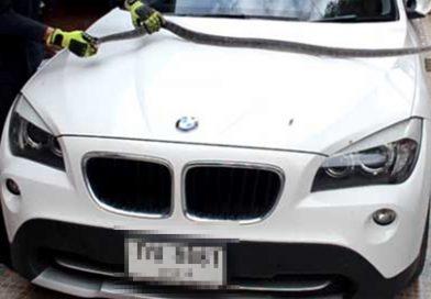 อีกคัน! งูเลื้อยเข้ารถหรู BMW คอหวยเล็งทะเบียนงวด 16/6/60 นี้